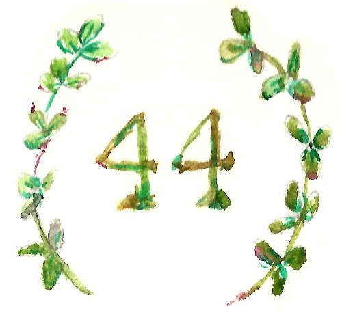 44 Clovers
